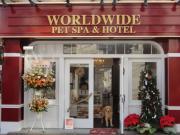 WORLDWIDE PET SPA & HOTEL お出かけタウン情報