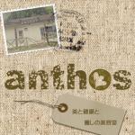 アントス(anthos)の写真・画像1